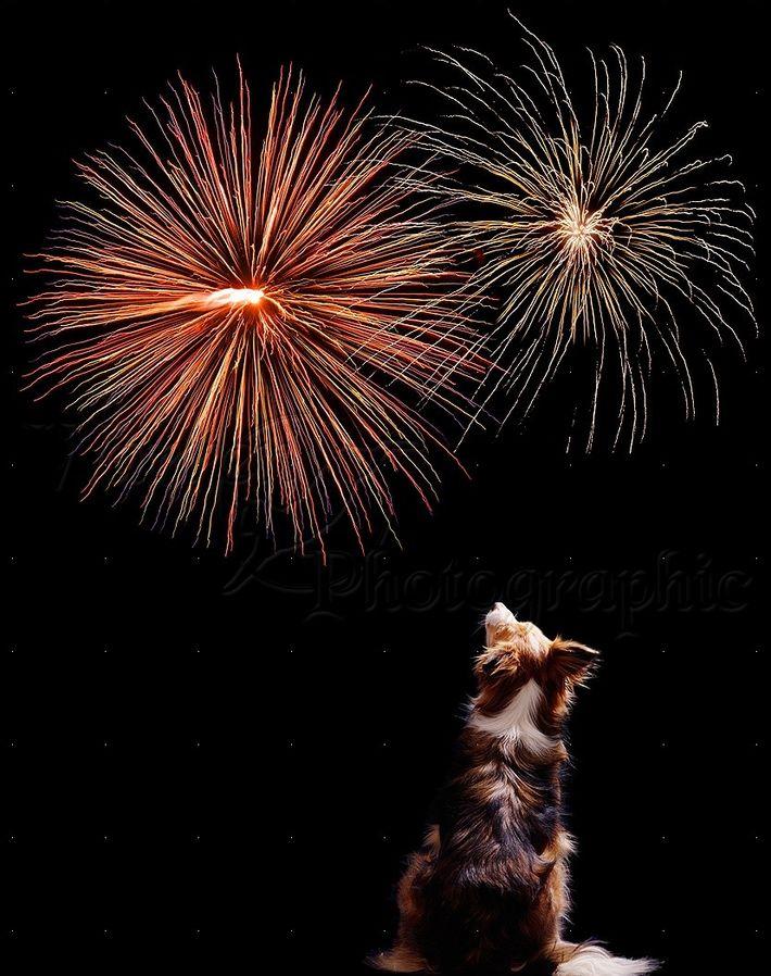 Csendes tűzijáték